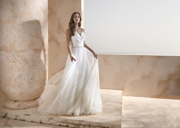 Papillon_2020_Hollywood_Afront-modeca-schlicht-elegant